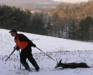 Hunting in Vermont